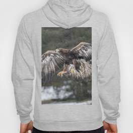 Eagle In The Snow. Hoody