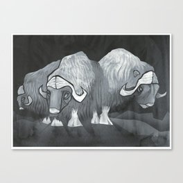 Muskoxen (third shift) Canvas Print