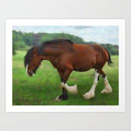 Shire Horse Mare Art Print