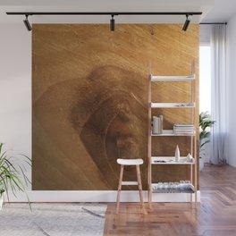 Real Wood Grain Wood Texture Wall Mural