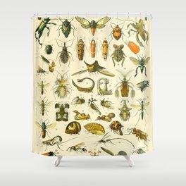 """Adolphe Millot """"Insectes"""" Nouveau Larousse 1905 Shower Curtain"""