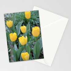 Appledorn Tulips Stationery Cards