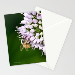 Honey Bee And Lavender Flower Stationery Cards