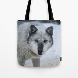 Lone wolf roams the Canadian Rockies Tote Bag