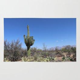 A Desert Landscape Rug