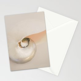 Nautilus Stationery Cards