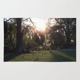A Gleaming Afternoon In New Orleans City Park Rug