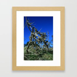 Tough Exterior (2) Framed Art Print
