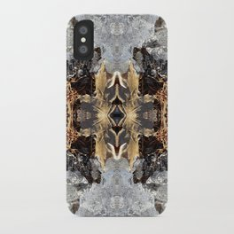 Diamond Ice Frozen Autumn - Debra Cortese photo art iPhone Case