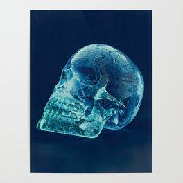 Veiled Winter Poster
