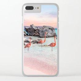Aruba Clear iPhone Case