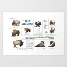 The Bison of Golden Gate Park from Meanwhile in San Francisco Art Print