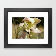 Open Bloom Framed Art Print