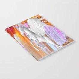 Pegasus Notebook