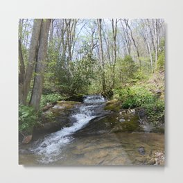 mountain stream in May Metal Print