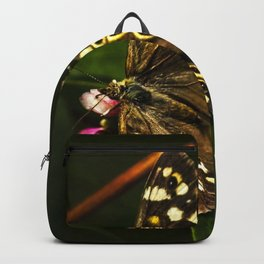 Butterfly feeding on nectar Backpack