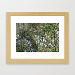 Les jardins Framed Art Print