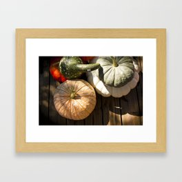 Pumpkins + Gords Framed Art Print