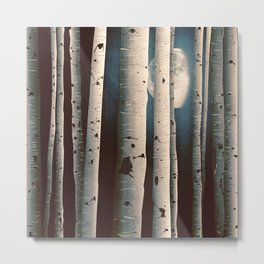 Birch wood at night Metal Print