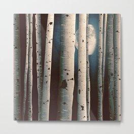 Birch wood at night Metal Print
