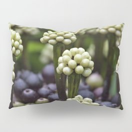 Green Aralia Flowers Pillow Sham