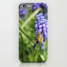 Sweet Hyacinth Slim Case iPhone 6s