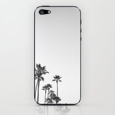 Black and White California Palms iPhone & iPod Skin