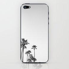 Black and White California Palms iPhone & iPod Skin