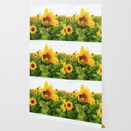 Sonnenblumen 4 Wallpaper