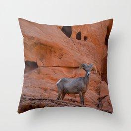 Desert Bighorn - Valley of Fire Throw Pillow