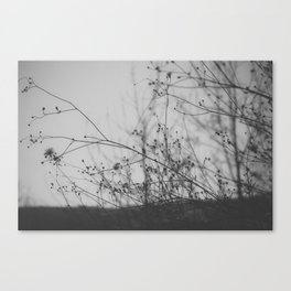 Not Everything Is Black and White Canvas Print