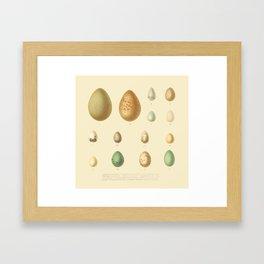 Eggcellent Framed Art Print