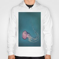 jellyfish Hoodies featuring Jellyfish by Pure Nature Photos