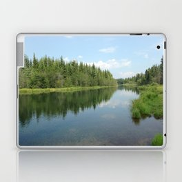 Alaskan Wild Laptop & iPad Skin