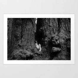 Redwood Faces - Self Portrait Art Print