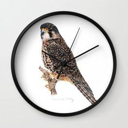 New Zealand Falcon Wall Clock