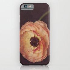 Winter Ranunculus  iPhone 6s Slim Case