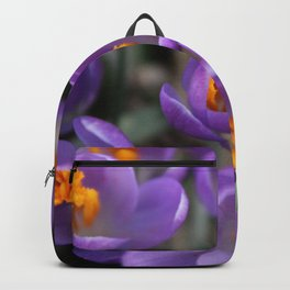 Bunch of Crocus Backpack