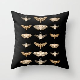 insects in gold - moths and beetles Throw Pillow