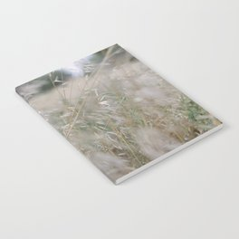 Tall wild grass growing in a meadow Notebook