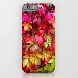 Autumn in Mallorca iPhone Case