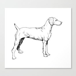 Viszla Dog Ink Drawing Canvas Print