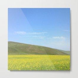 yellow flower field Metal Print