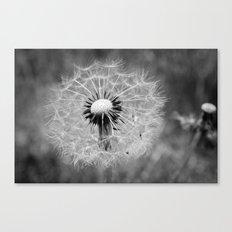 Blow away. Canvas Print