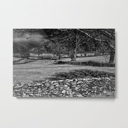 Infra Red Shadows Metal Print