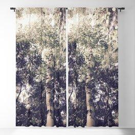 Dappled Light Filtered Through Trees Blackout Curtain