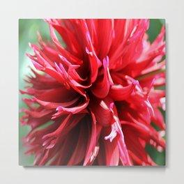 Crimson Red Metal Print