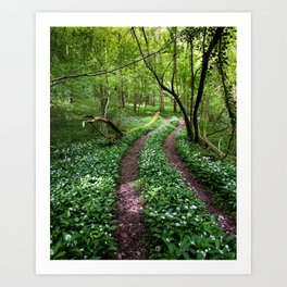 Wild Garlic Road Art Print