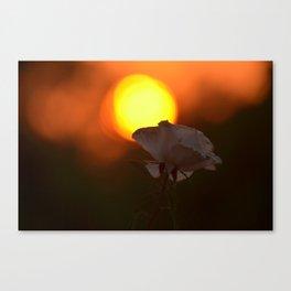 Bushfire Sunrise Canvas Print