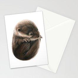 Shy Otter Stationery Cards